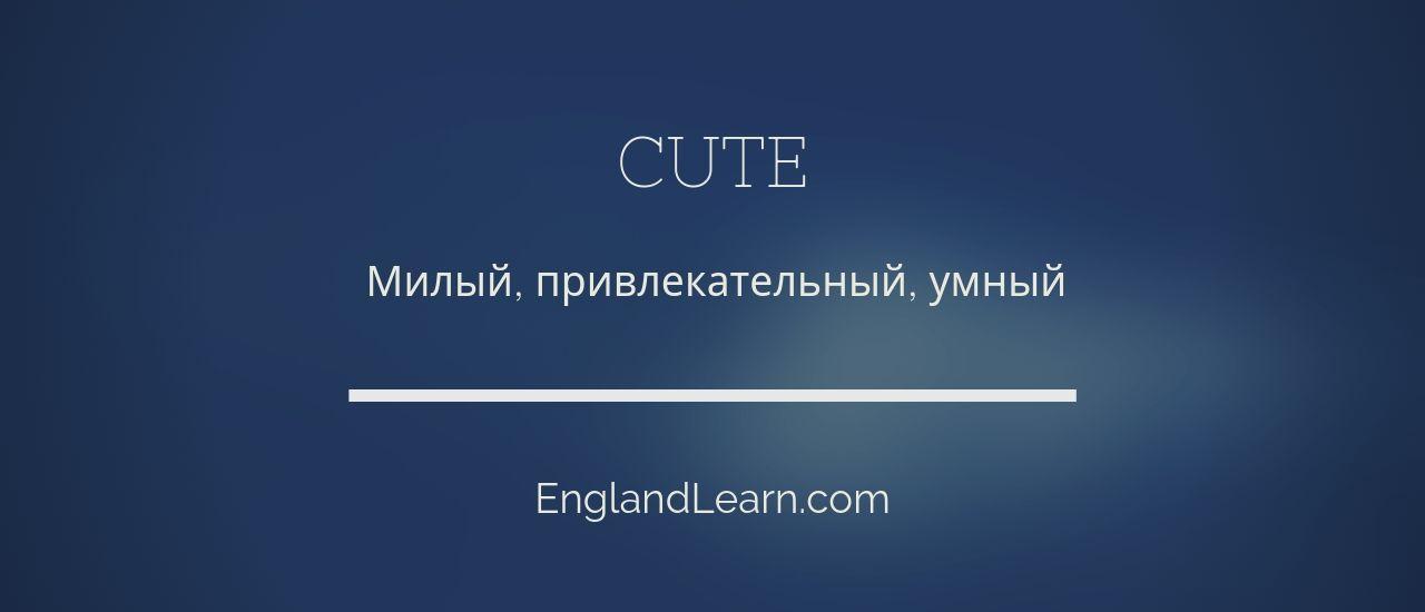 перевод cute
