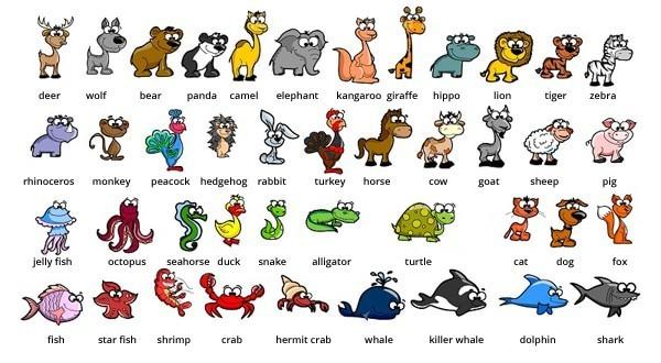 Названия животных на английском