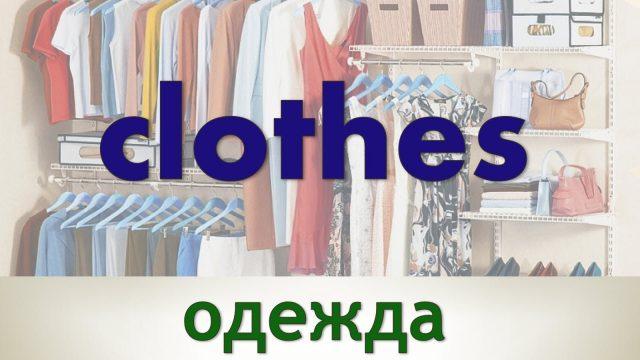 одежда на английском