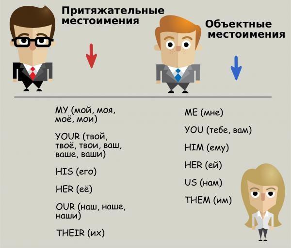 Притяжательные местоимения в английском языке: правила, примеры, таблица