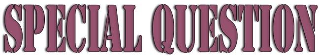 Специальные вопросы (Special Questions) в английском языке