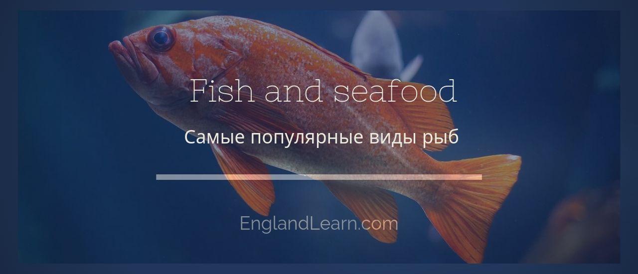 Название рыб на английском языке